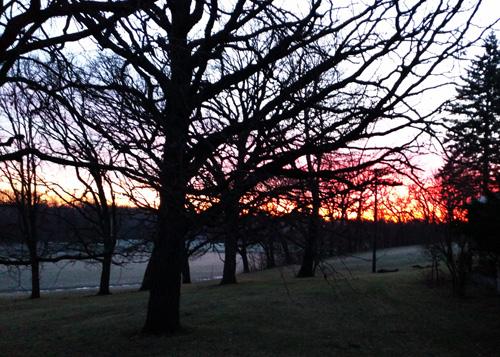 Pamela Park Sunrise